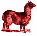 RedLlama's Avatar